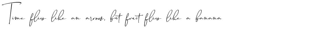 Travel Soulmates Signature