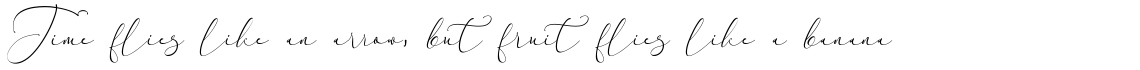 Everything Calligraphy Regular