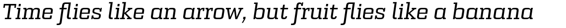 Bourgeois Slab Medium Italic