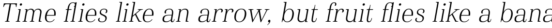 Haboro Normal Thin Italic