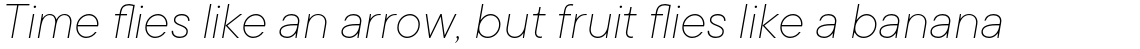 TT Commons Thin Italic