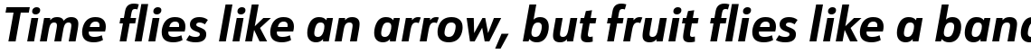 URW Form SemiCondensed Bold Italic