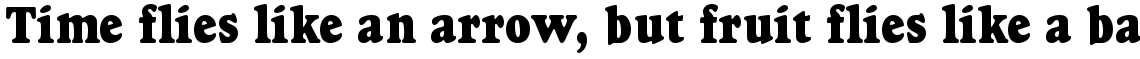 Goudy Heavyface condensed (D)