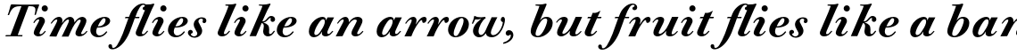 Bodoni Old Fashion URW Medium Italic