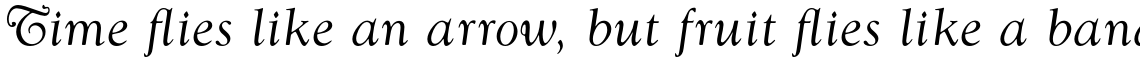 Goudy Swash Regular Italic