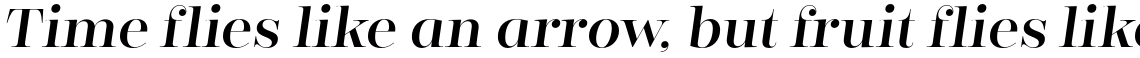 Encorpada Classic Regular Italic